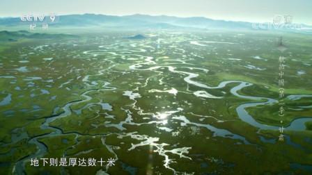 玛曲县:美丽湿地草原,水草相映每看一眼都是风景