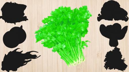 学习认识洋葱等美味果蔬,乐宝识果蔬