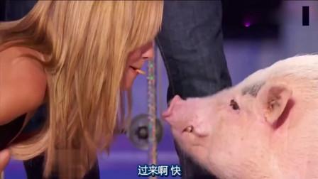 达人秀:他白天造飞船,晚上训练小猪,连评委都忍不住要上台献吻!