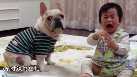 寶寶打了狗狗一下,狗狗轉臉就是一口,下一秒忍住別笑