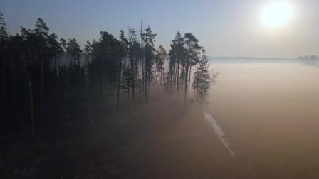 航拍晨曦透过雾霭的丛林,似乎有种迷幻的感觉