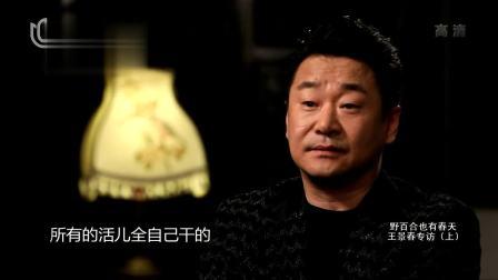 王景春:走进自己心中最高的舞台 可凡倾听 20190323 高清版