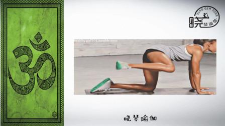 瑜伽解剖35 跑步膝的理疗思路 晓琴瑜伽微课堂