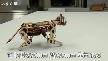 老外脑洞惊奇,用木板打造机器猫,像真猫一样灵活,平衡感很强