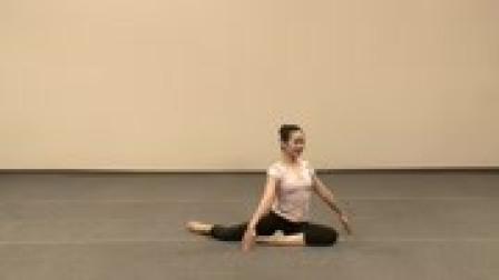 中国舞协舞蹈第四版三级正版考级资料(鹅鹅鹅)
