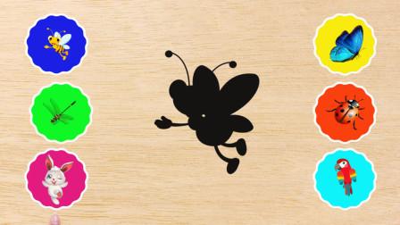 学习认识蝴蝶、蜜蜂、七星瓢虫等昆虫,熊小仁识昆虫