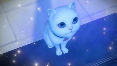 小猫咪修炼的能量很纯粹,小猫咪面对着月亮幻化成了美少女!