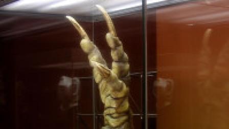 地下800米暗藏外星人博物馆,里面还有恐怖杀人机器!