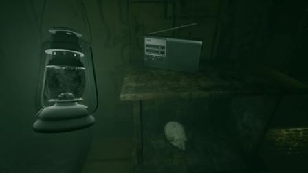 [预览]恐怖游戏最奇葩的高能 独具一格