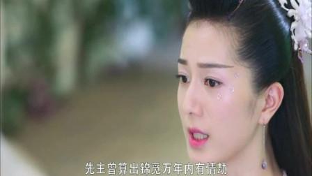 香蜜:润玉愿意帮锦觅取出陨丹,任何人都不应该剥夺她爱的权利!