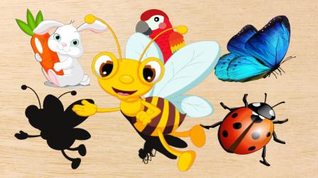 学习认识兔子、鹦鹉、蜻蜓等昆虫和动物,熊小仁识动物