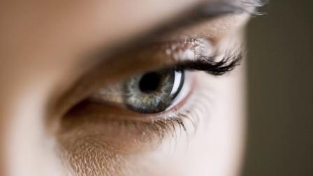 为什么有些人注定是单眼皮?他的回答比医生还专业!