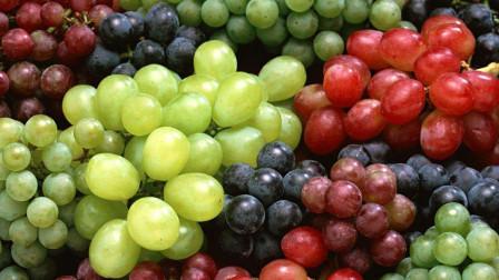 挑选葡萄有技巧,牢记三点,挑出的葡萄又大又甜