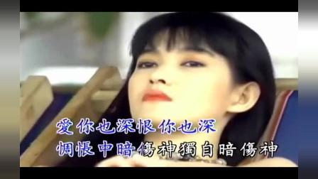 韩宝仪经典老歌《负心的人》超好听