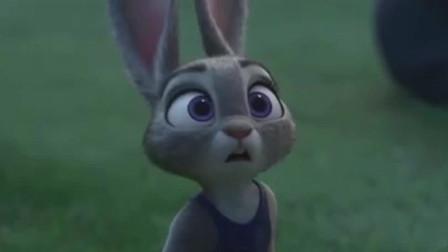 朱迪在学校历尽千辛万苦,最后所有动物都看不起的兔子朱迪凭能力逆袭成为第一!