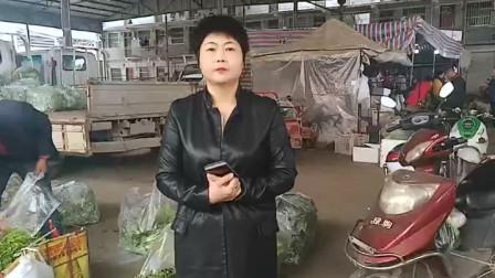 李姐带你看西安蔬菜批发市场菜价怎么样?问了菜价后,李姐傻眼了