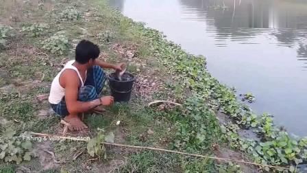 河里鱼多无人钓,小哥连抛几杆,大鱼频频咬钩,这样钓鱼才带劲!