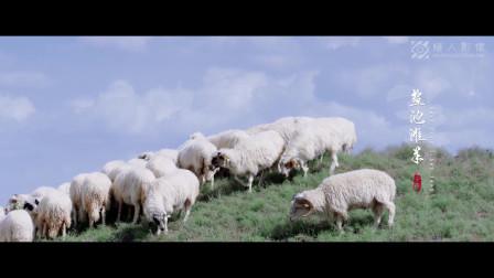 《盐池滩羊》盐池滩羊区域公用品牌形象片