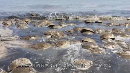 这种生物活了4亿元,躲过了物种灭绝,却没能躲过中国吃货!