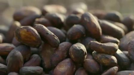 水果传:你了解巧克力的前世今生吗