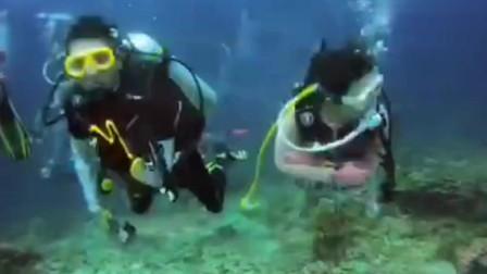 美女上斯米兰潜水,跟朋友在水下玩嗨了,好羡慕这样的友情!