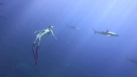 一米七大长腿妹子玩潜水,在水下上演人与鲨同游,一般人不敢玩!