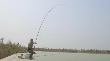 看大毛老师如何单手钓起大鱼