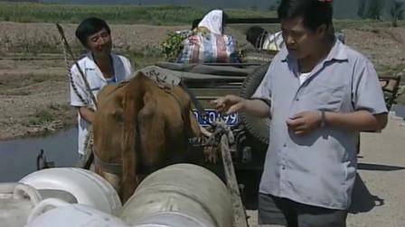 一乡之长:赵本山车坏半路,让牛拉汽车,搞笑