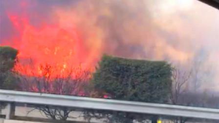 突发!山西朔州市应县西收费站护坡着火 浓烟致使高速路能见度低