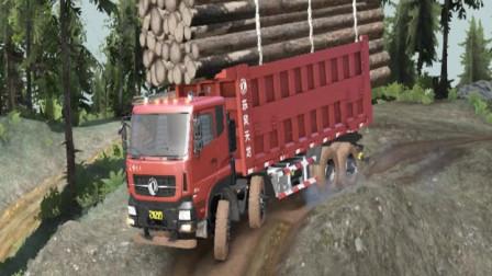 天龙KC自卸运输超载木头