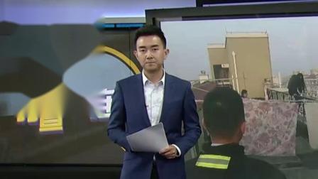 """上海早晨 2019 新闻晨报:上海视觉艺术学院启动人工孵化  帮黑天鹅妈妈""""孵孩子"""""""