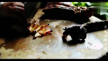 舌尖上的中国湘西传统熏制腊肉的方法茶树熏烤后藏稻谷堆里