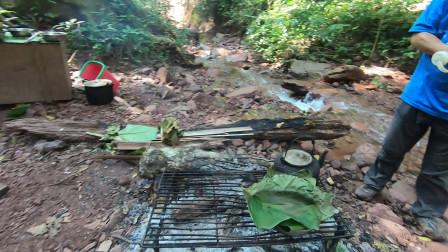 云南西双版纳,热带雨林里做饭,当地厨师就地取材,吃纯天然美食