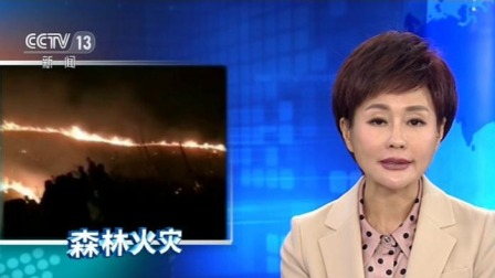 新闻直播间 2019 江西景德镇发生森林火灾 大火已被扑灭