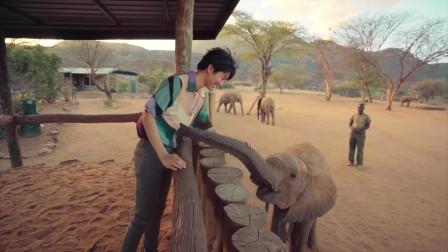 王俊凯的非洲之旅全记录,得到专属的珍贵记忆
