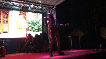 河南商丘:农村老家歌舞团表演,一夜挣6000元,你看挣的多吗