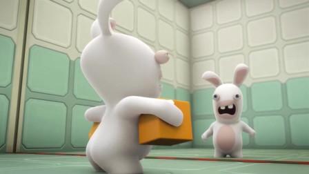 疯狂的兔子动漫:呆萌的兔子让专家无奈,专家差点因此大打出手