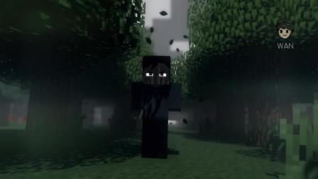 我的世界动画-森林漫步-Wanimation