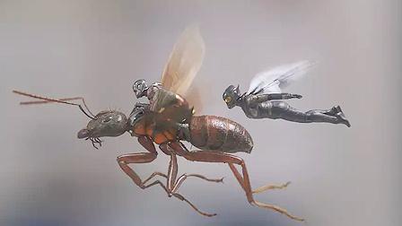 《蚁人2:黄蜂女现身》内地定档8月24日  60秒正式预告