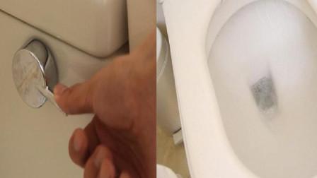 卫生间大肠杆菌分布检测,结果如何?冲水时马桶盖到底该不该盖?