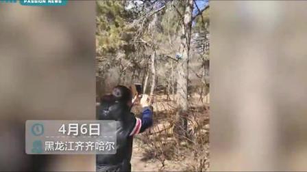 """东北味魔性森林防火宣传录音走红,""""特别有效,特别洗脑"""""""