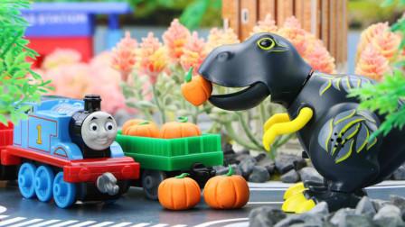 托马斯小火车玩具视频 第一季 托马斯小火车给奇妈妈送南瓜,巨大凶猛的恐龙紧追不舍