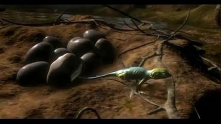 """地球早期的昆虫全是""""巨兽""""庆幸人类没在那个时期出现"""