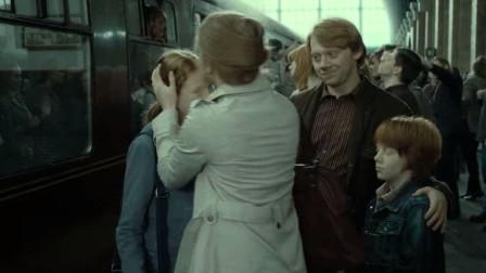最后的魔法战争!哈利波特战胜了伏地魔,而赫敏却和肖恩在一起