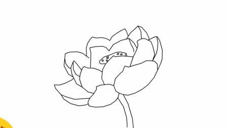 怎么画简单漂亮的莲花简笔画