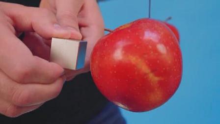 钕磁铁有多恐怖?老外用苹果测试,网友直呼颠覆三观!