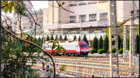 【铁路MV】Truly Madly Deeply--京广SS9长交路纪念专辑