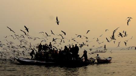 瓦拉纳西的清晨,恒河上到处都是尸体和漫天的乌鸦。