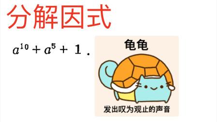龟龟,这是哪个魔鬼出的鬼题,分解因式:a^10+a^5+1