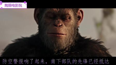 猩球崛起3:被人偷袭后儿子被,还要带领族人寻找新家园,只能用生命捍卫一切